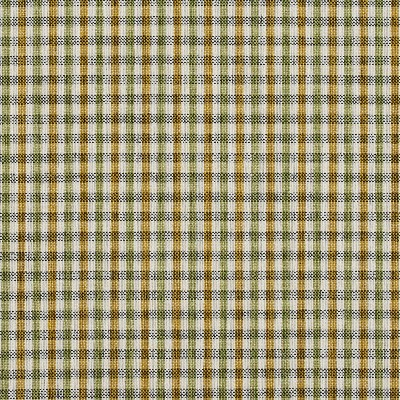 Charlotte Fabrics 5818 Spring Check Search Results