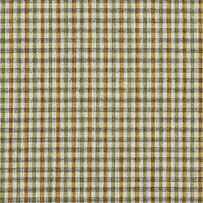 Charlotte Fabrics 5818 Spring Check Charlotte Fabrics