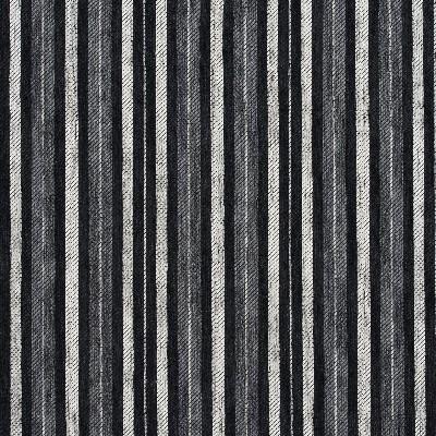 Charlotte Fabrics 5825 Onyx Stripe Search Results