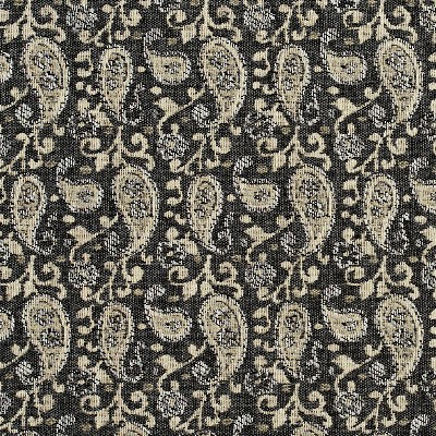 Charlotte Fabrics 5840 Sterling Paisley Search Results