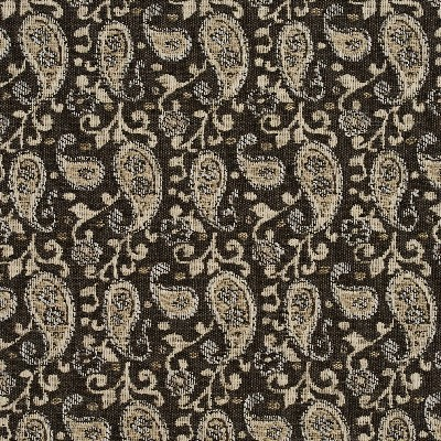 Charlotte Fabrics 5842 Desert Paisley Search Results