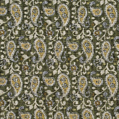 Charlotte Fabrics 5848 Spring Paisley Search Results