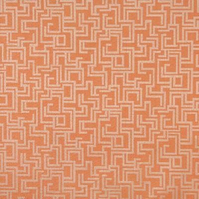 Charlotte Fabrics 6635 Nectar/Geometric Search Results