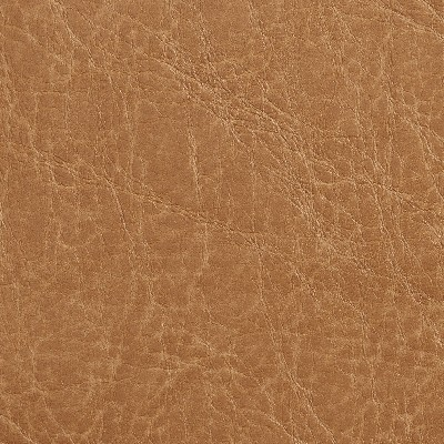 Charlotte Fabrics 7055 Camel Search Results