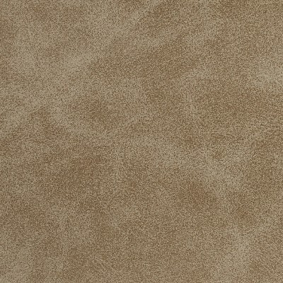 Charlotte Fabrics 7062 Mushroom Search Results