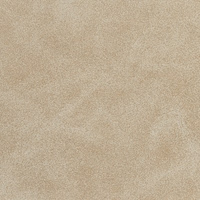 Charlotte Fabrics 7063 Sand Search Results