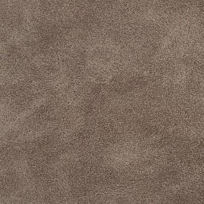 Charlotte Fabrics 7065 Stone Search Results