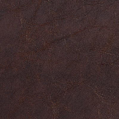 Charlotte Fabrics 7072 Sable Search Results