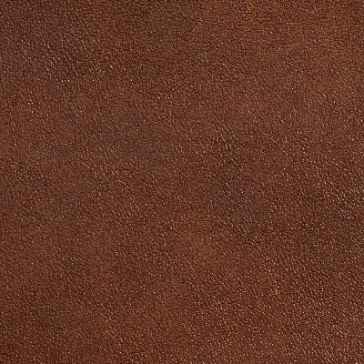 Charlotte Fabrics 7073 Pecan Search Results