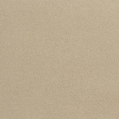 Charlotte Fabrics 7076 Parchment Search Results