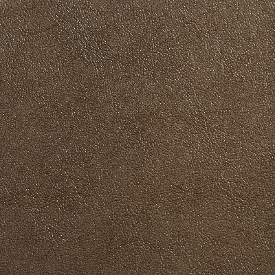 Charlotte Fabrics 7077 Olive Search Results