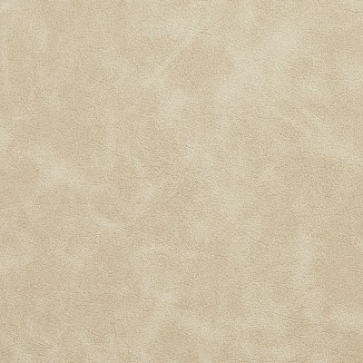 Charlotte Fabrics 7406 Ivory Search Results
