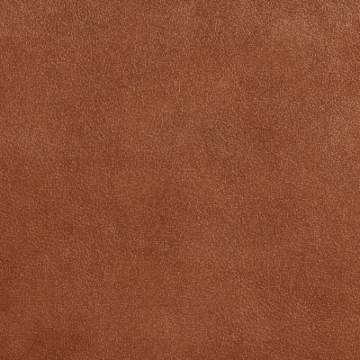 Charlotte Fabrics 7642 Pecan Search Results