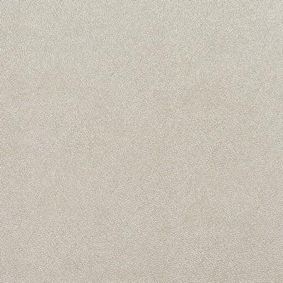 Charlotte Fabrics 8030 Parchment Parchment Search Results