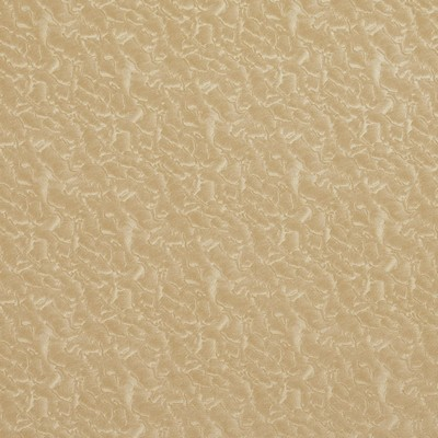 Charlotte Fabrics 8056 Fawn Fawn Search Results