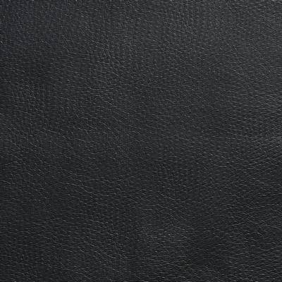 Charlotte Fabrics 8260 Navy Search Results