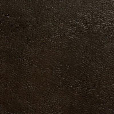 Charlotte Fabrics 8264 Walnut Search Results
