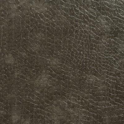 Charlotte Fabrics 8267 Stone Search Results