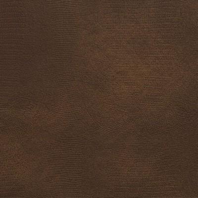 Charlotte Fabrics 8274 Cocoa Search Results
