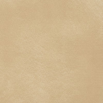 Charlotte Fabrics 8275 Sand Search Results
