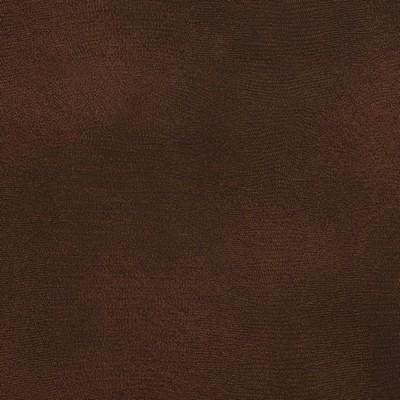 Charlotte Fabrics 8276 Briarwood Search Results