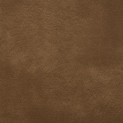 Charlotte Fabrics 8277 Taupe Search Results