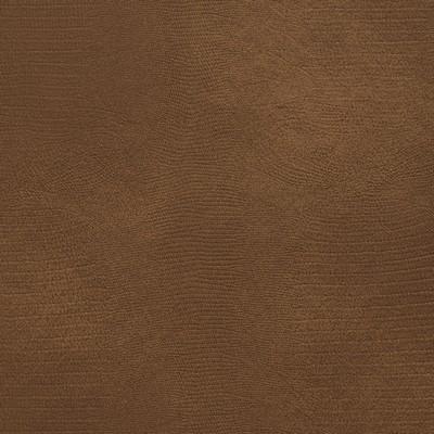 Charlotte Fabrics 8278 Pecan Search Results
