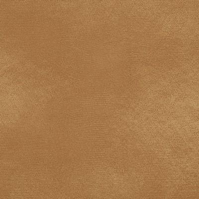 Charlotte Fabrics 8279 Buckskin Search Results