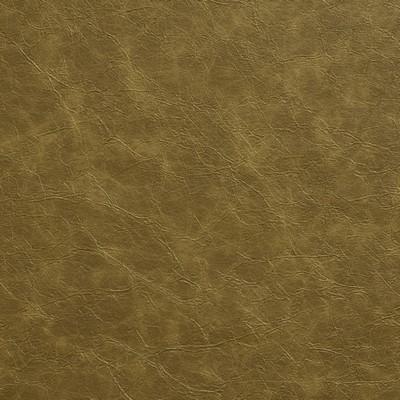 Charlotte Fabrics 8281 Moss Search Results