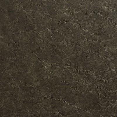 Charlotte Fabrics 8284 Smoke Search Results