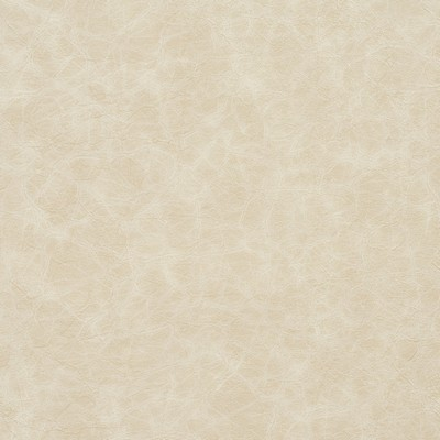 Charlotte Fabrics 8288 Oyster Search Results