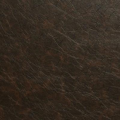 Charlotte Fabrics 8289 Mocha Search Results