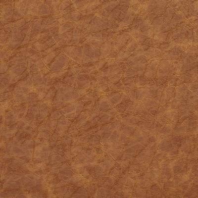 Charlotte Fabrics 8290 Caramel Search Results