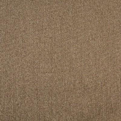 Charlotte Fabrics 8336 Desert Search Results
