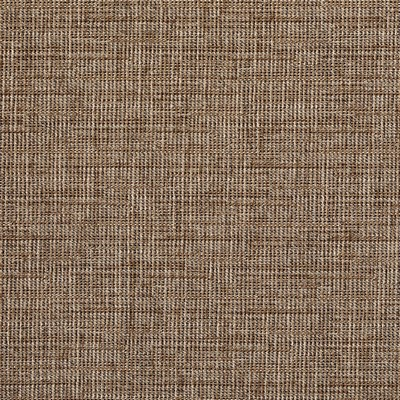 Charlotte Fabrics 8513 Peanut Peanut Search Results