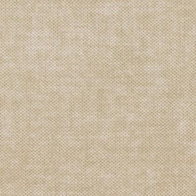 Charlotte Fabrics D1023 Birch Search Results