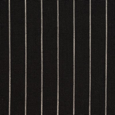 Charlotte Fabrics D110 Onyx Pinstripe Search Results
