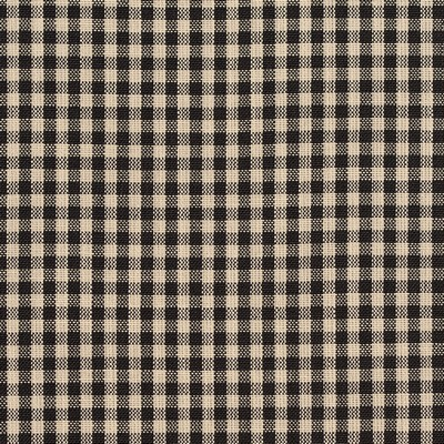 Charlotte Fabrics D117 Onyx Gingham Search Results