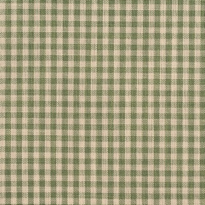 Charlotte Fabrics D119 Juniper Gingham Search Results
