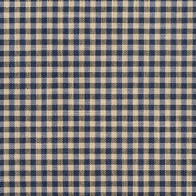Charlotte Fabrics D120 Indigo Gingham Search Results