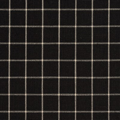Charlotte Fabrics D124 Onyx Checkerboard Search Results