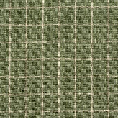 Charlotte Fabrics D126 Juniper Checkerboard Search Results