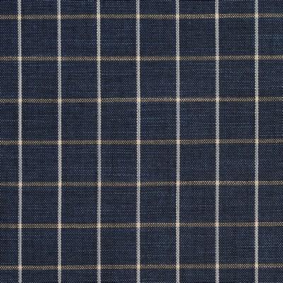 Charlotte Fabrics D127 Indigo Checkerboard Search Results