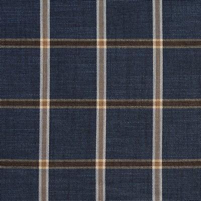 Charlotte Fabrics D141 Indigo Windowpane Search Results
