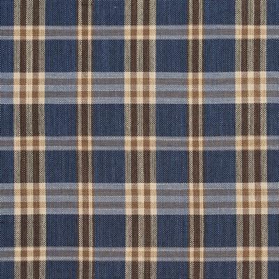 Charlotte Fabrics D155 Indigo Tartan Search Results