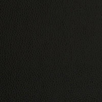 Charlotte Fabrics V423 Onyx Charlotte Fabrics