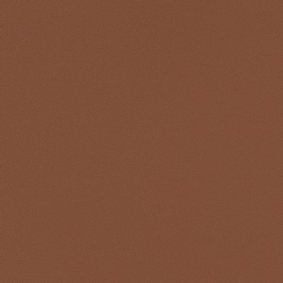 Charlotte Fabrics V513 Cognac Search Results
