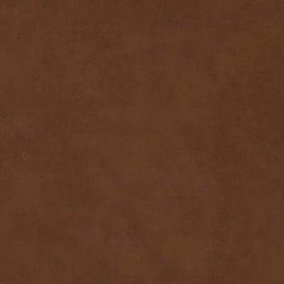 Charlotte Fabrics V515 Sepia Search Results