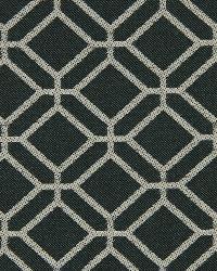 Robert Allen Outlook Panther Fabric