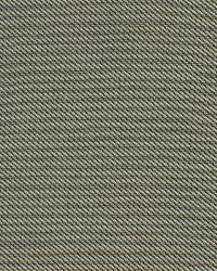 Robert Allen St Tropez Dune Fabric